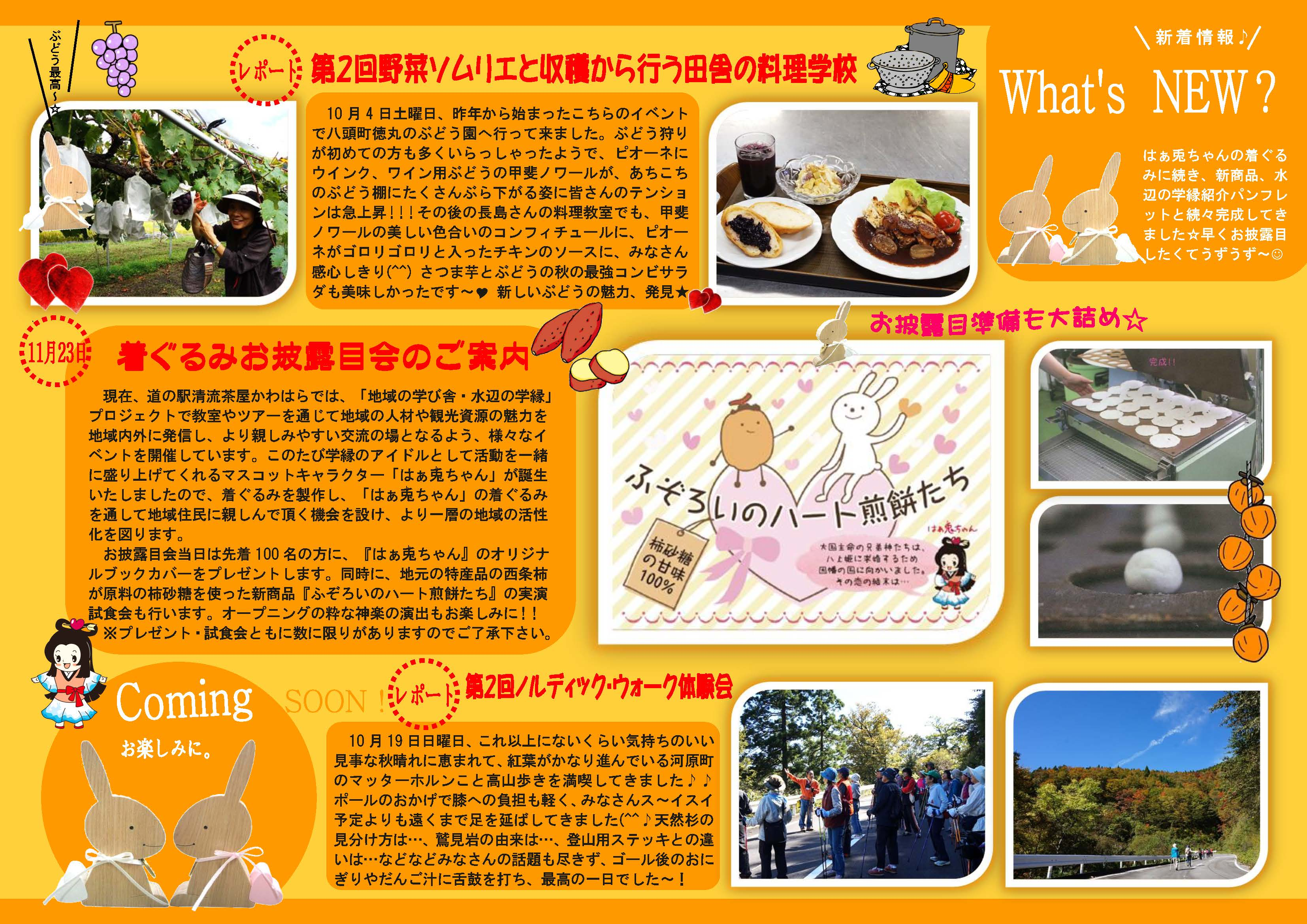 What's NEW?原稿№40