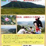 霊石山山歩ツアー募集チラシ表面