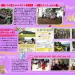 What's NEW?原稿№72