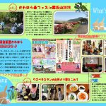 What's NEW?原稿№78