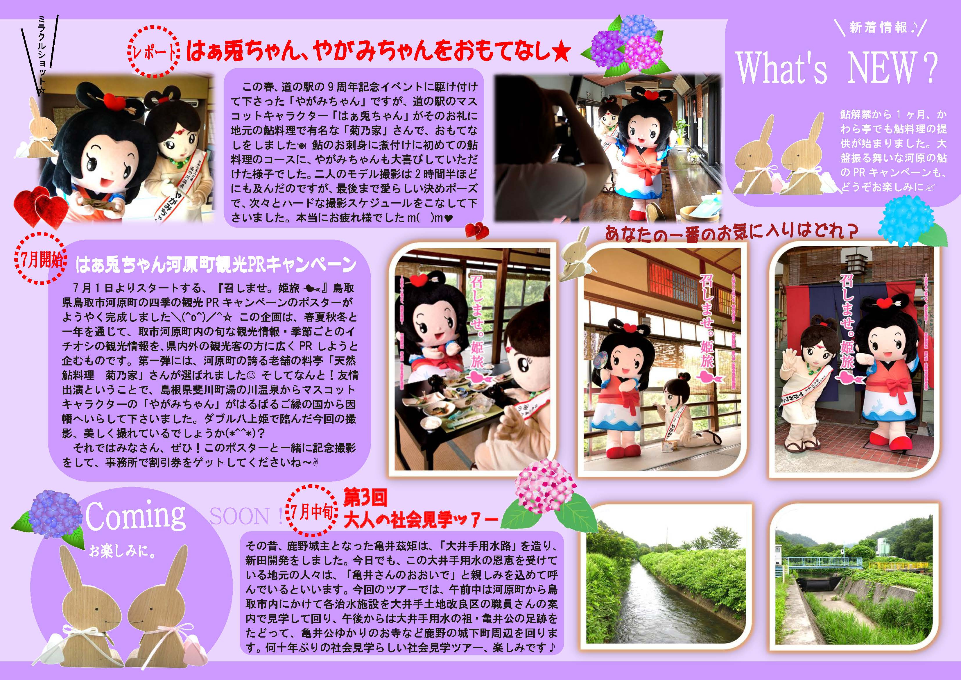 What's NEW?原稿№49